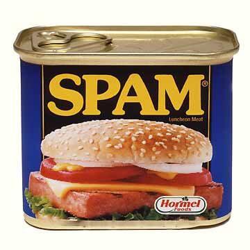 spam du web