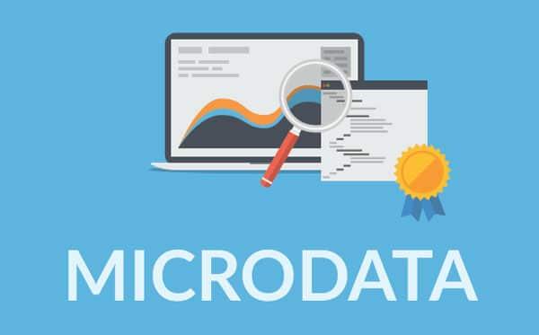 microdatas