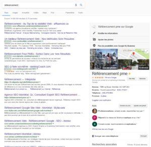 """knowlege graph sur le requête """"référencement"""" (juin 2017)"""