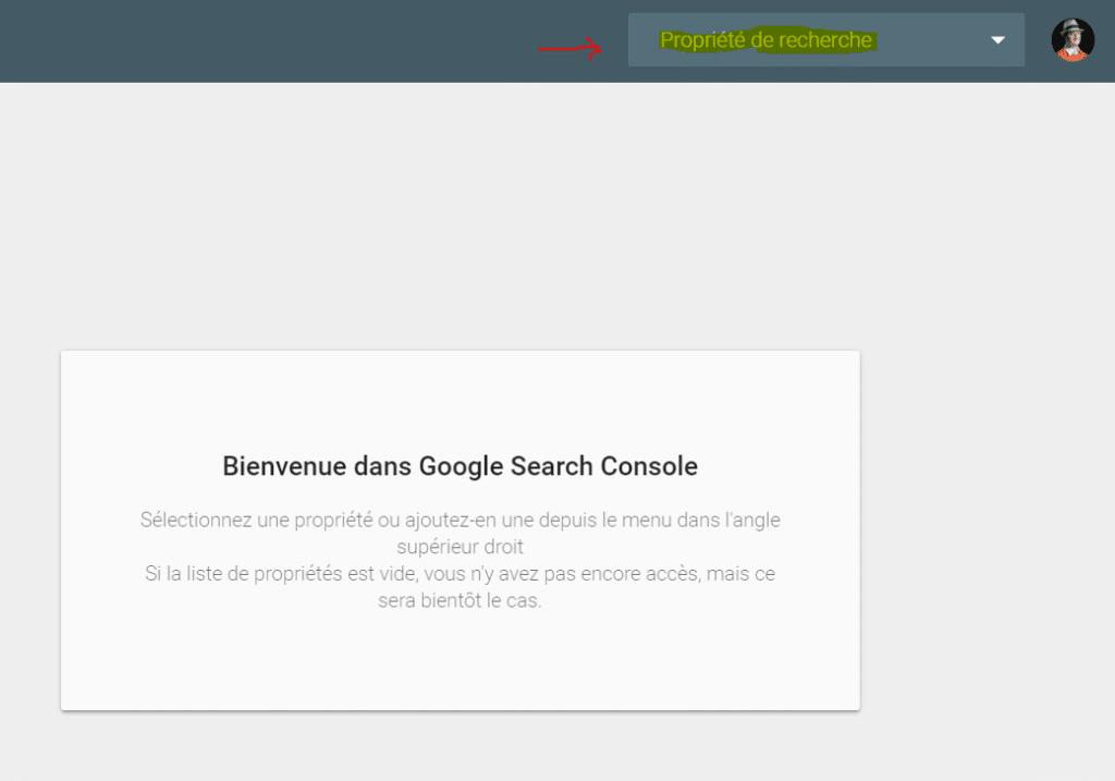 nouvelle search console